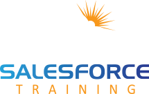 Salesforce Training logo - footer