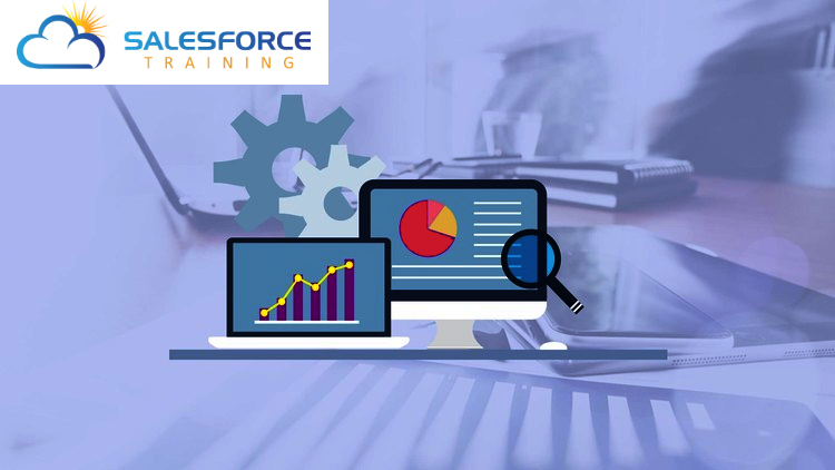 Salesforce Training Program